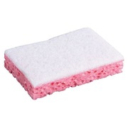 Set 10 scraping sponges sanitary Spontex