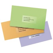 Package of 25 address labels Avery L 7567 199,6 x 289,1 mm for laser printer